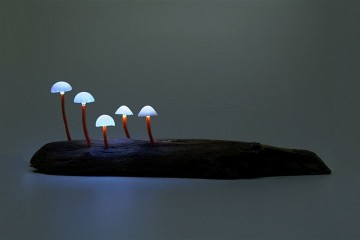 these-six-lamps-imitate-nature10
